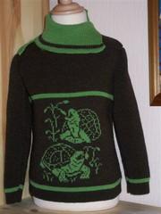Kinder Pullover Schildgröte