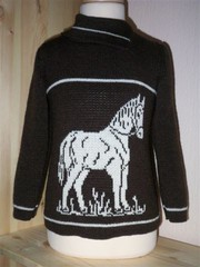 Kinder Pullover Pferd